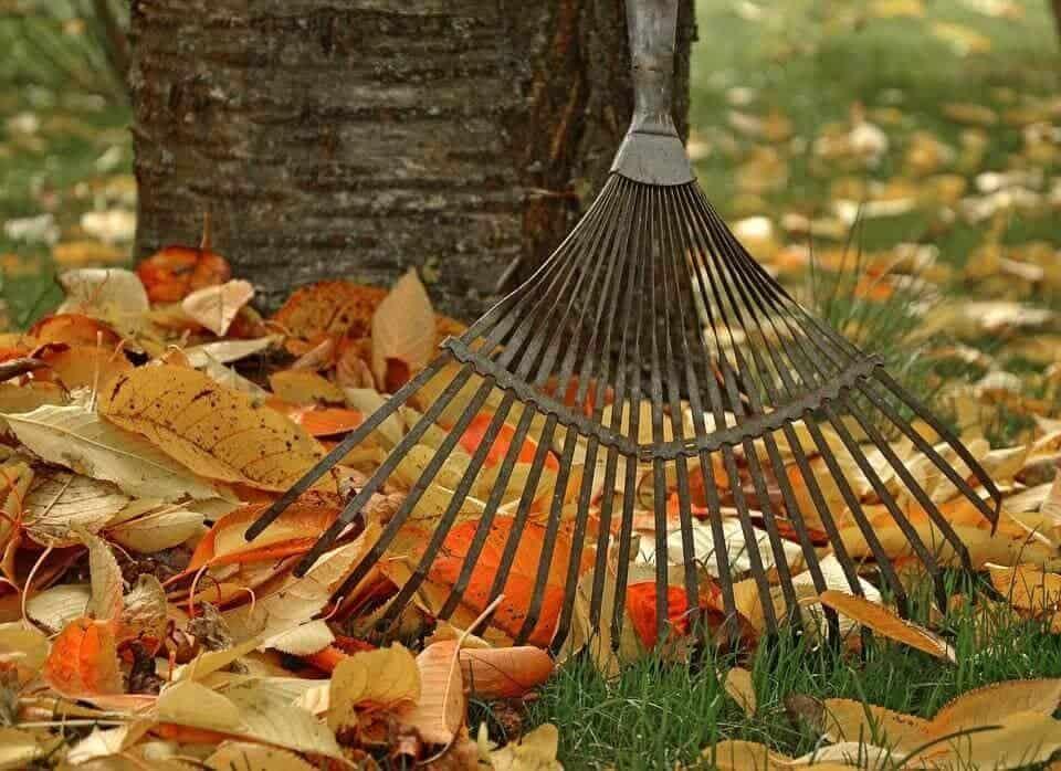 С настъпването на есента, идва и усещането за наближаващата зима. Време е да се подготвите за застудяването.
