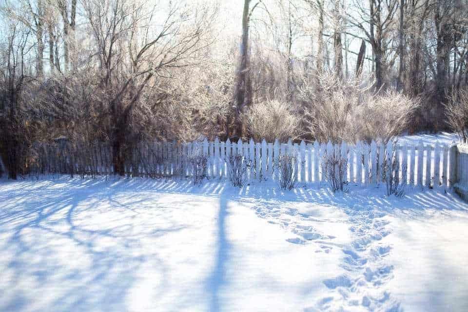 През зимата градинската и дворна работа е значително по-малко. Време е за почивка и подготовка на новия сезон.