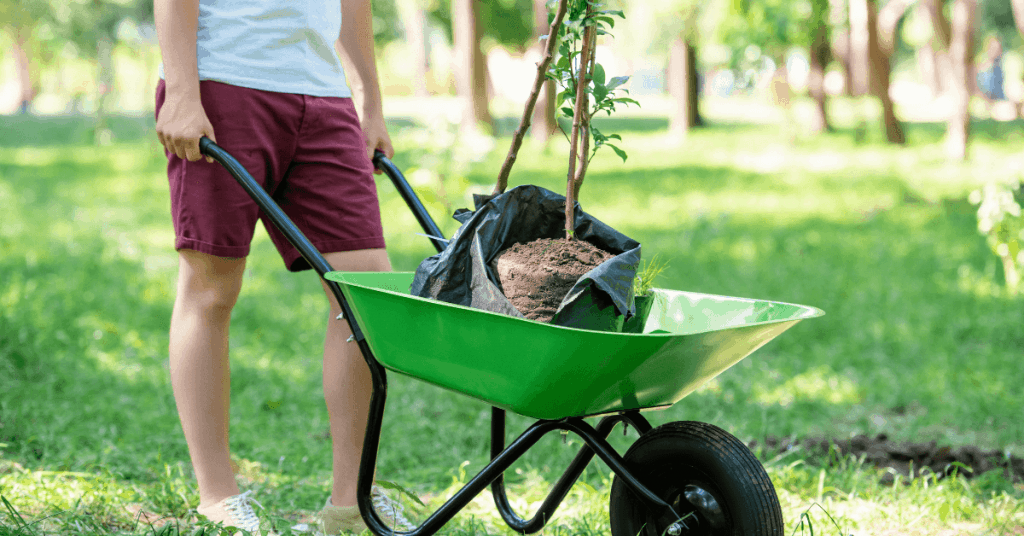 Човек тика ръчна количка натоварена с дръвче
