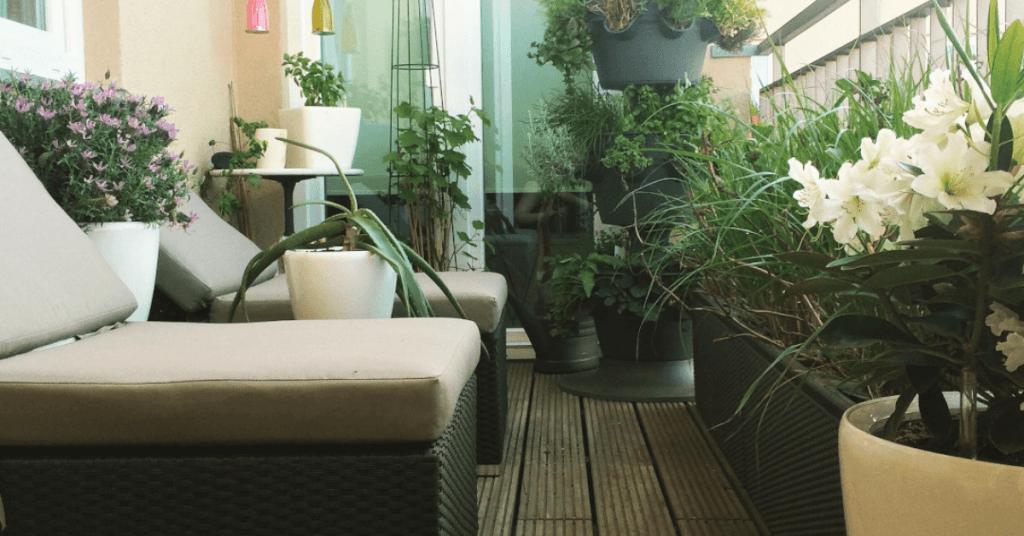 Тераса с декорация